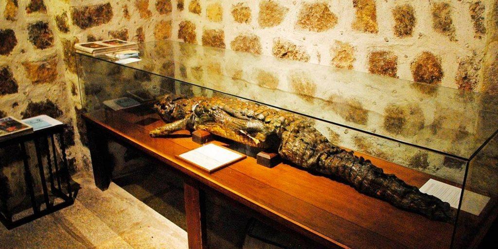 cocodrilo del monasterio de Sonsoles