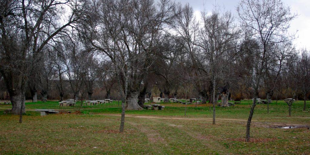 Parque el soto en Ávila con niños